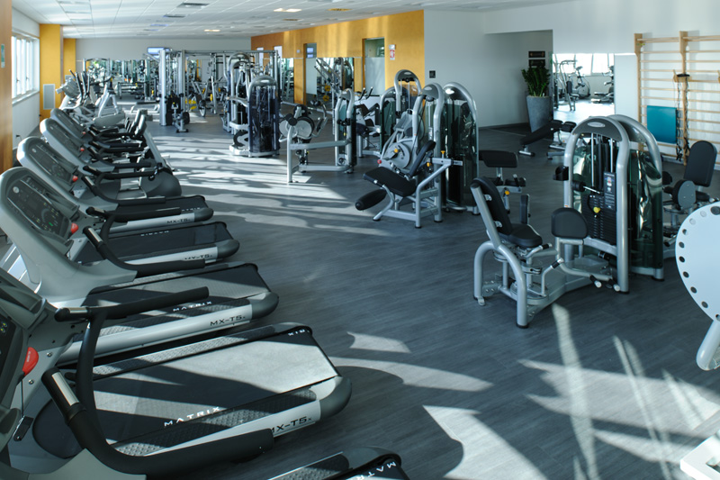 My Club Loungefitness