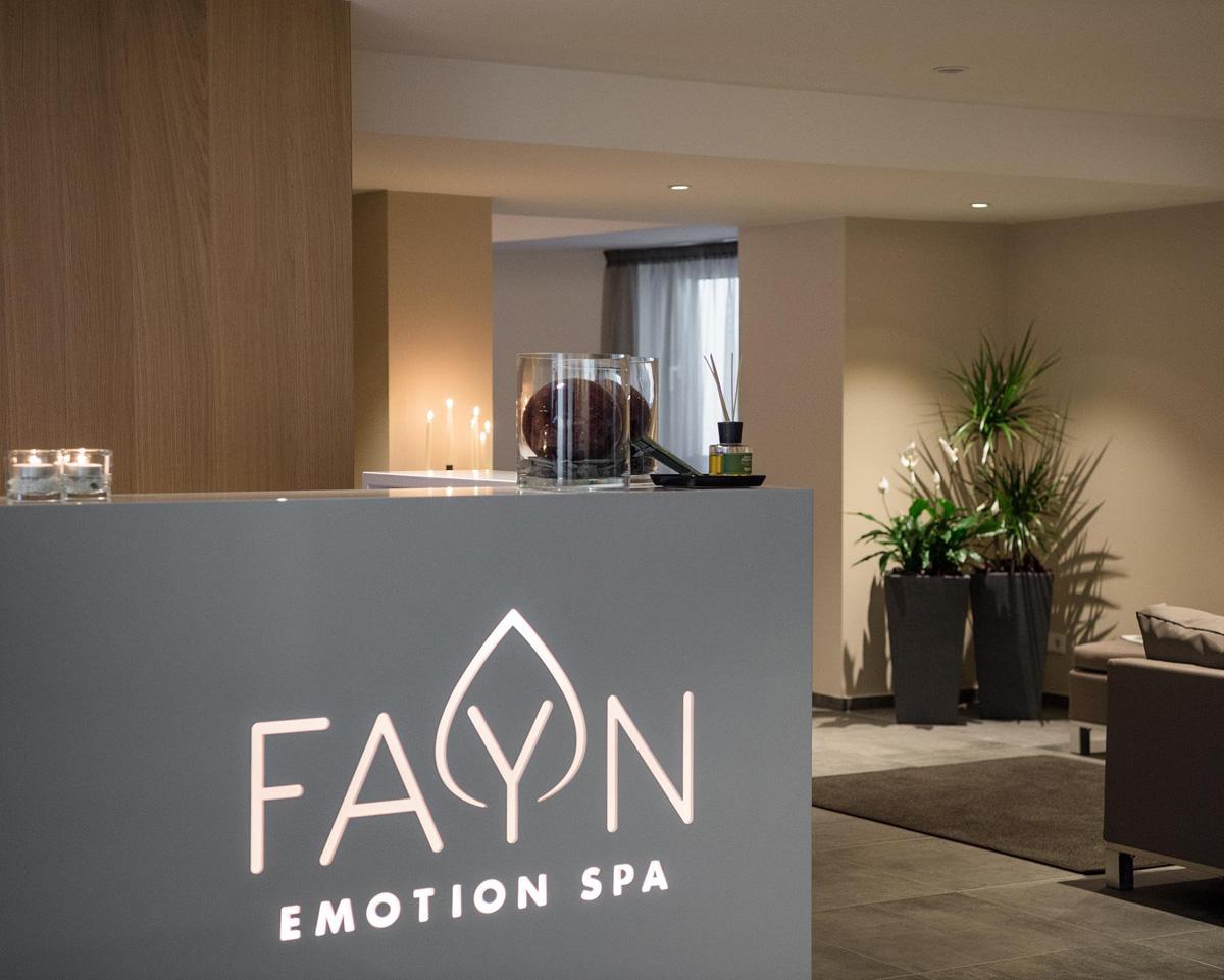 hotel-fayn_04